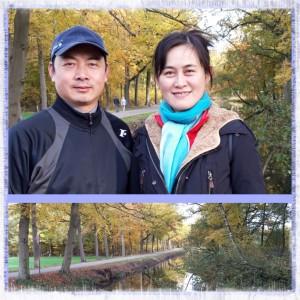 chinese-docenten